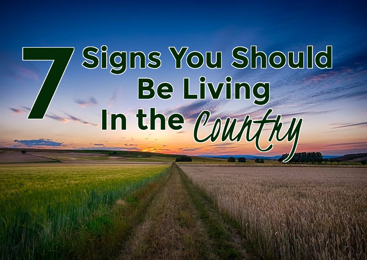 7 signs you should be living in the country