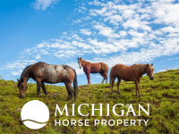 horse property in michigan for sale